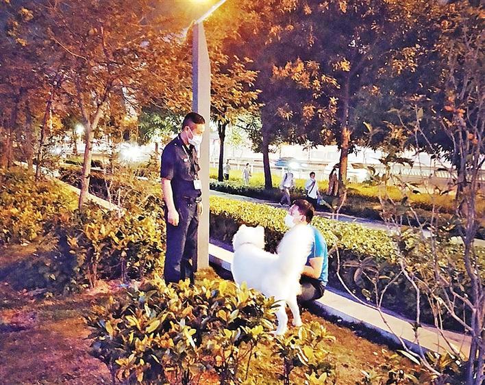 龙华区加大宣传执法力度 营造文明养犬氛围